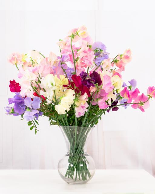 Lillherned lõikelilledena