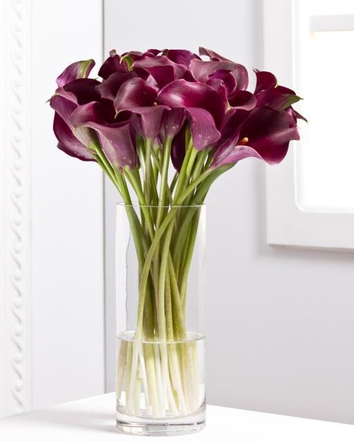 Calla Lilies/Colour Choice