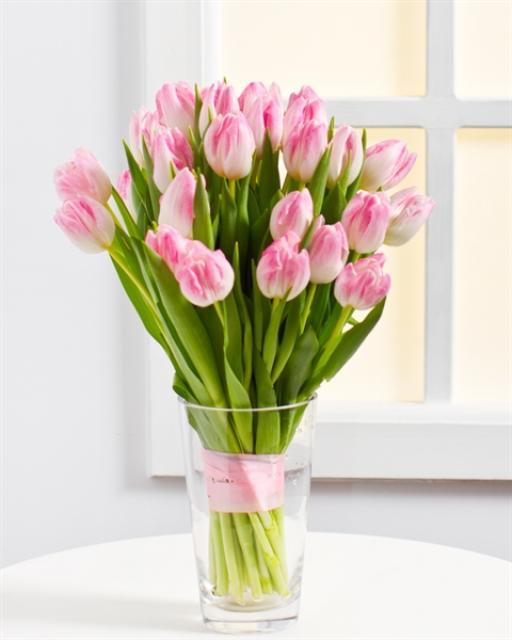 (Detsember-Aprill) Kevadine pastelne kimp tulpidest