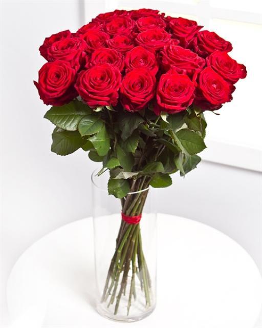 Roses / Colour Choice